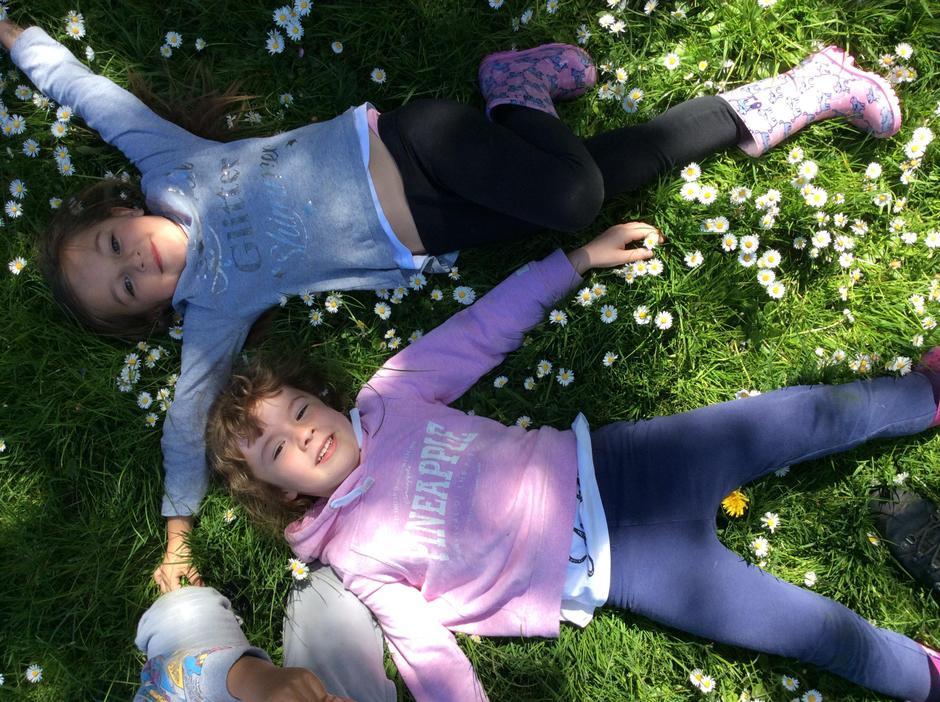 Dappled sunshine and daisies.