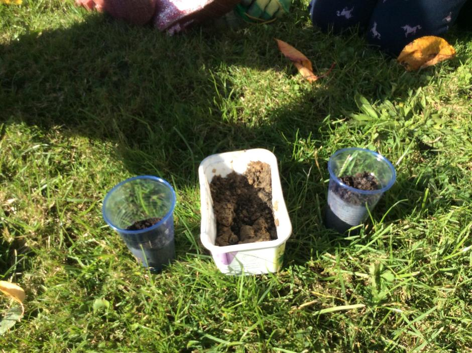 3 different types of soil.