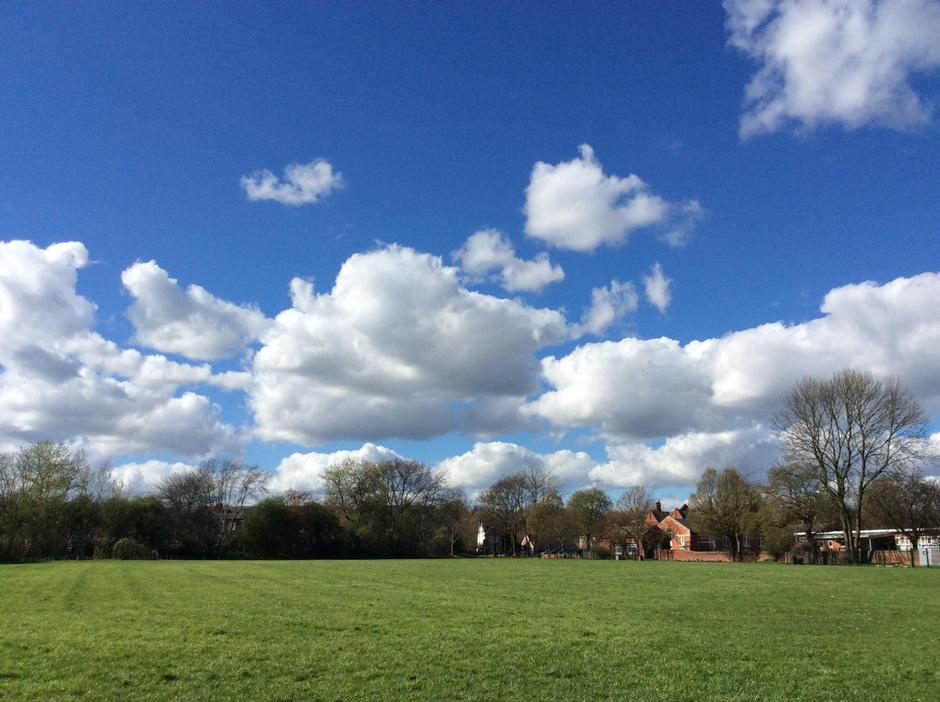 Perfect day for cloud watching.