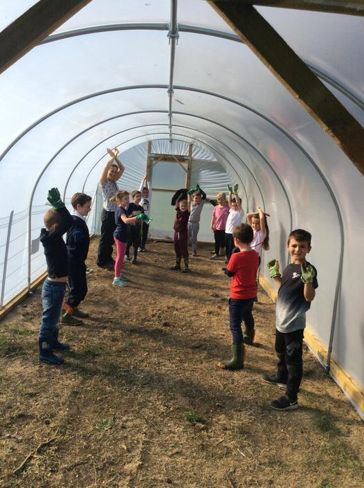 Being plants in our new polytunnel