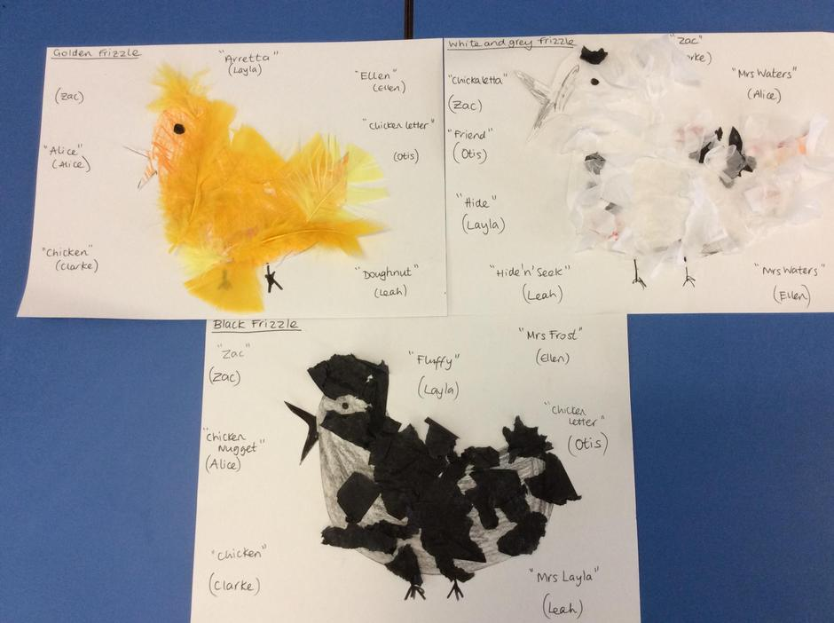 Suggested names from some of the Nursery children.