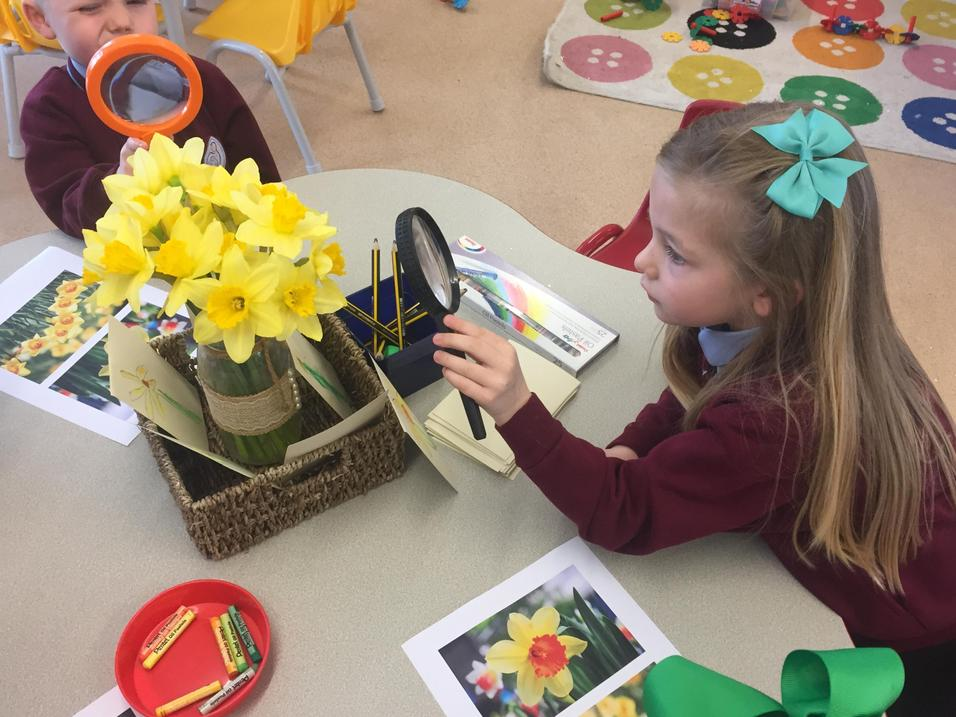Magnifying glasses help us to see detail...