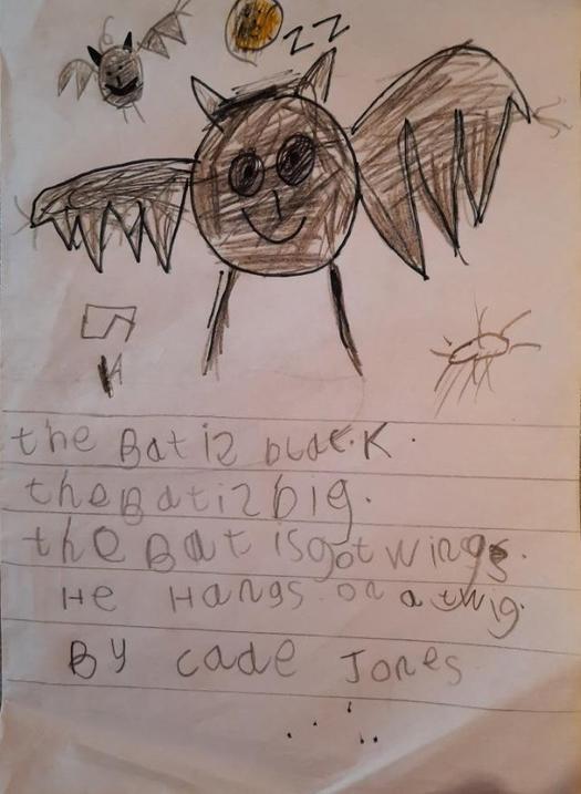 A fantastic poem by Cade.