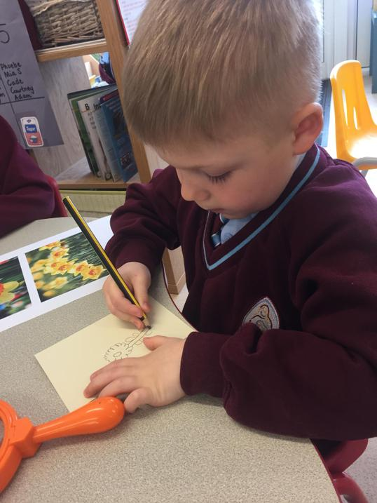Using our physical development skills to draw...