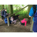Sensory Trail- Learning to listen