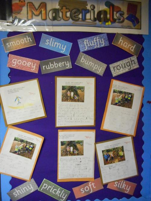 Our writing about our Den Building in the Forest
