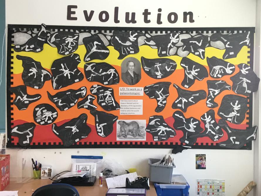 We've been budding palaeontologists!