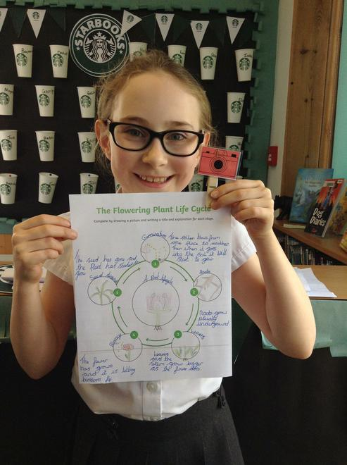 WOW! Well done for your scientific explanation!