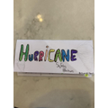 Niamh's Hurricane brochure