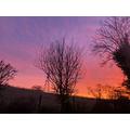 Michael's morning sky
