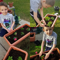 Oskar is planting flowers