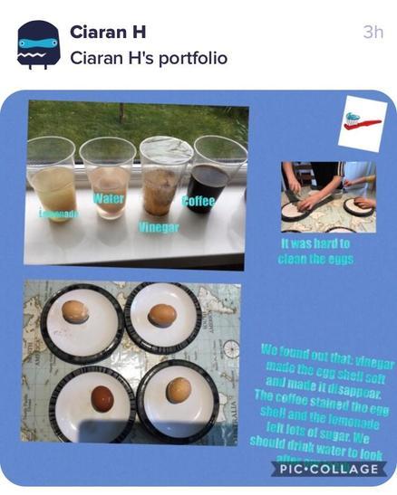 Ciaran's Portfolio.jpg