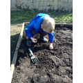 Preparing the soil for planting flower seeds
