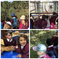 We had a great first day back visiting the zoo!
