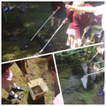 Pond dipping in Science