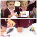 Outdoor learning; painting 'seasons' rocks!