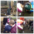 Hunting for minibeasts in micro-habitats!