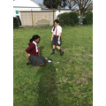Estimating and counting daisies