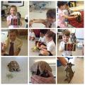 Animal Visit to School!