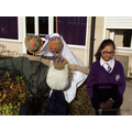 Our scarecrows are outstanding in their field!