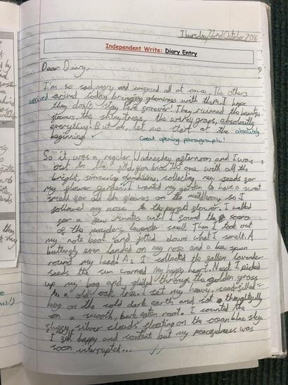 Read the first page of Bethany's diary entry!
