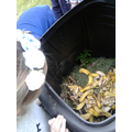 We have started filling our compost bin!