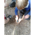 Digging for worms in the mud kitchen!
