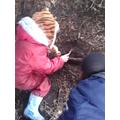 Exploring the environment