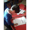 Key Stage One Eco Warrior Completing Audit