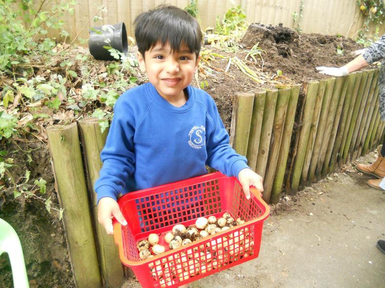 We grew lots of potatoes!!