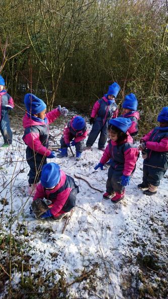 Snow fun and exploration :)