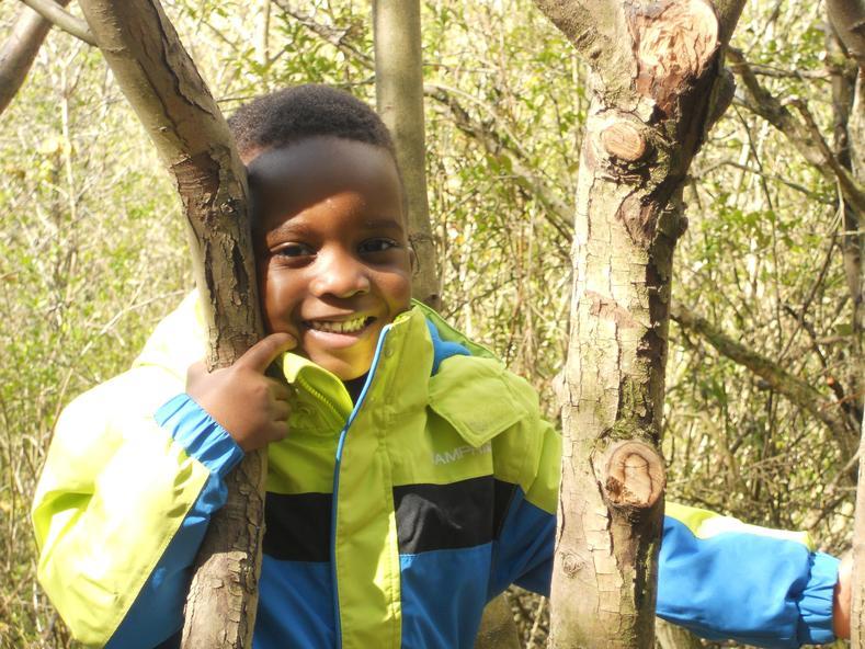 l love to climb the tree!