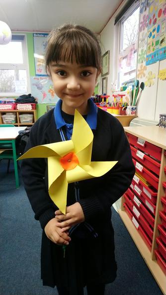 Asal's Welsh Daffodil