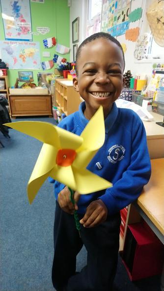 Tiyi's Welsh Daffodil