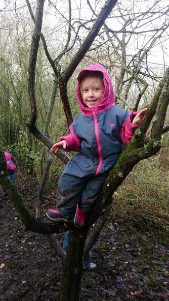 Darcey is climbing trees