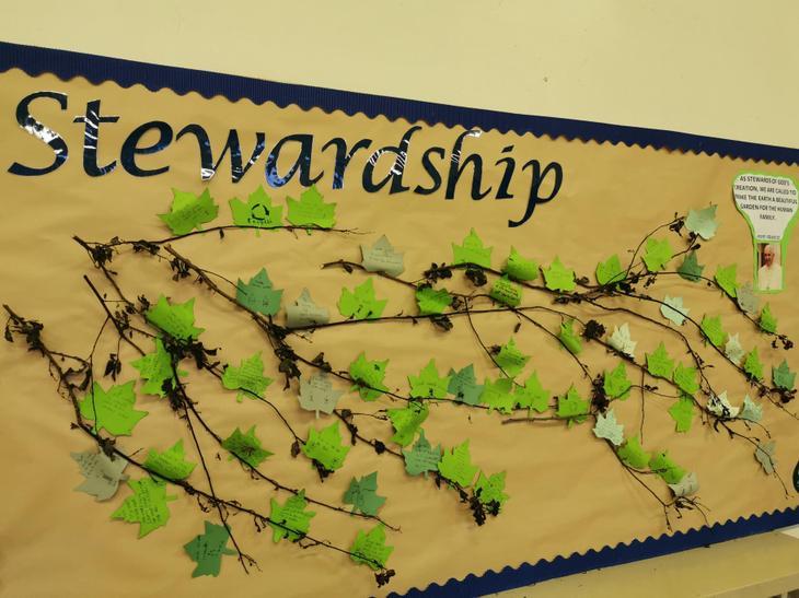 Year 6's Value is 'Stewardship'