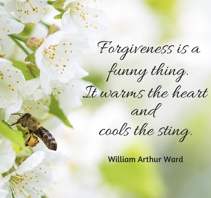Our Reflection theme is Forgiveness
