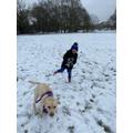 Bodhi loving the snow