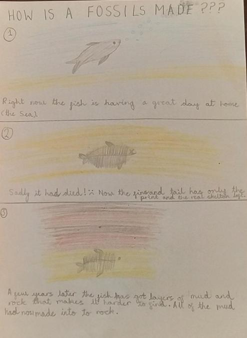 Jincy's Science work on fossils (1)