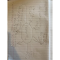 Casey's brainstorm