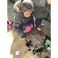 Orla's Gardening