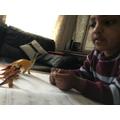 Mathew working hard on his maths