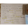 Noah's diary entry