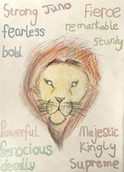 Juno used a You Tube tutorial to draw the lion - remarkable!