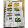 Some of Audrey's Flags