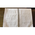 Audrey's writing