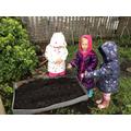 Planting Sunflower Seeds EE