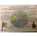 The Mindful Wheel