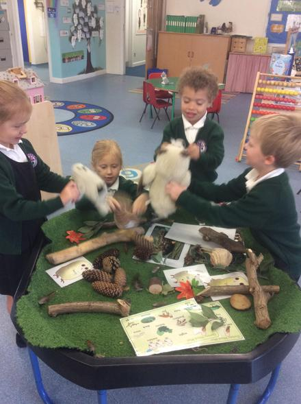 Retelling the story of the Owl Babies