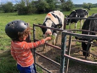 He met some animals along the way ..